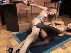 Hot shemals possessions kicks from doggystyle fucking with soft pantyhose on